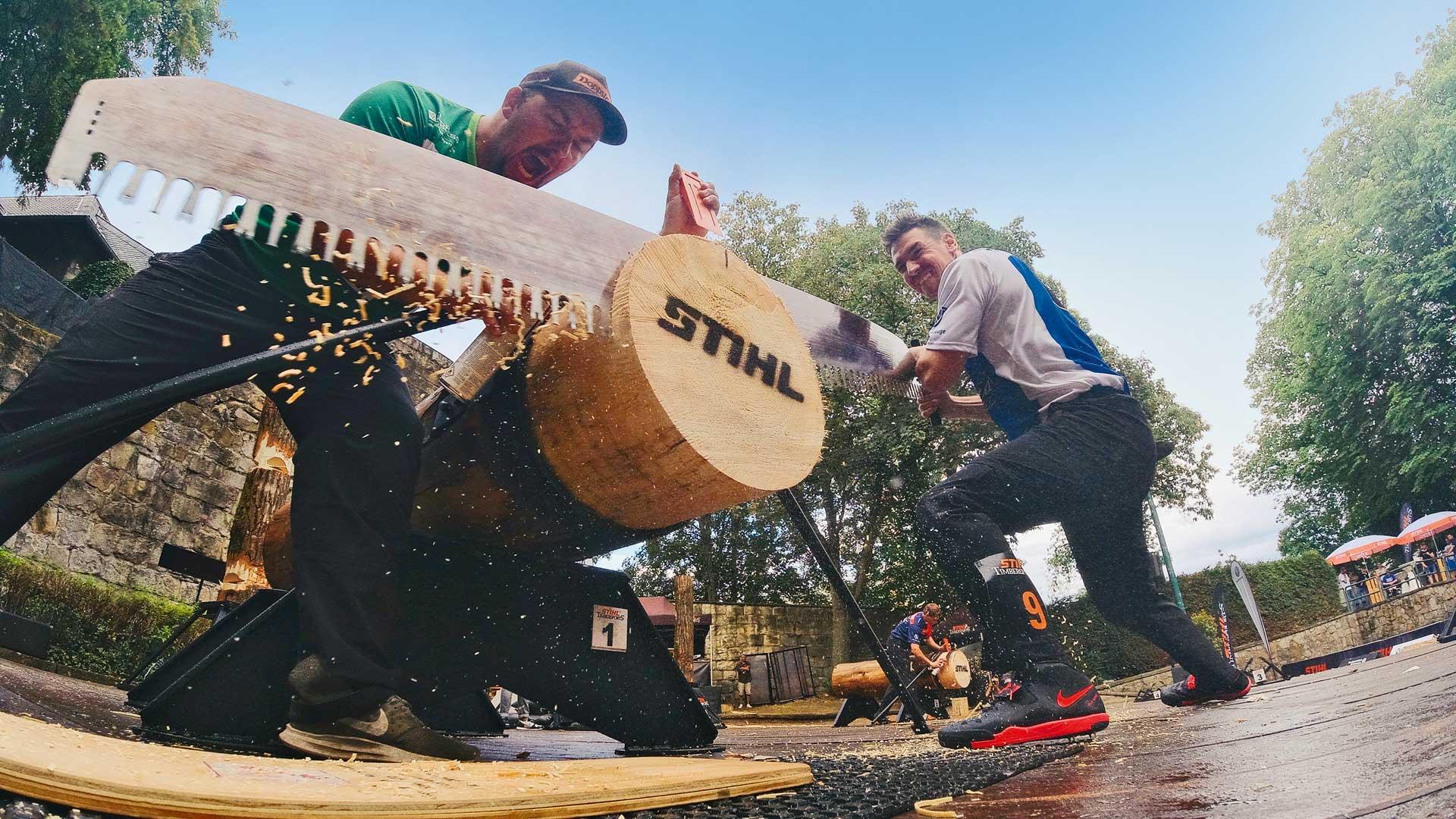Zwei Männer sägen Baumstamm